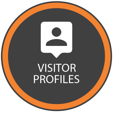 Visitor profile web analytics